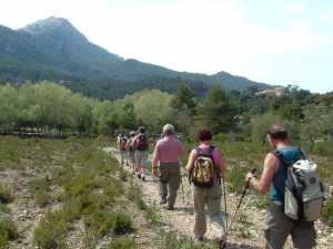 Wanderinsel Mallorca