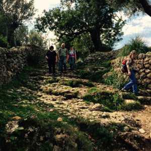 Trekking in der Tramuntana