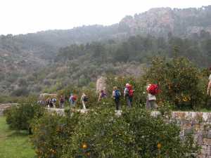 Pilgermarsch nach Lluc