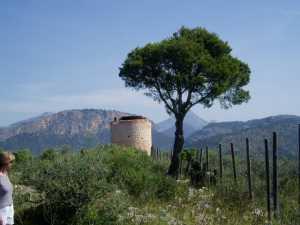 Von Esporles nach Valldemossa
