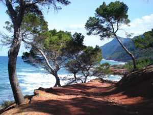 Wandern von Calvià bis Santa Ponça
