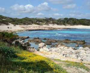 Rundwanderung von Paguera nach Cap Andritxol